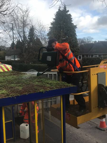 Town Council staff watering the new sedum roof on a bus shelter at Radbrook Road